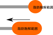 プラズマリポの融解イメージ